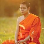 Йога и Медитация ретрит