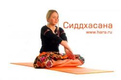 Сиддхасана, асана для медитации